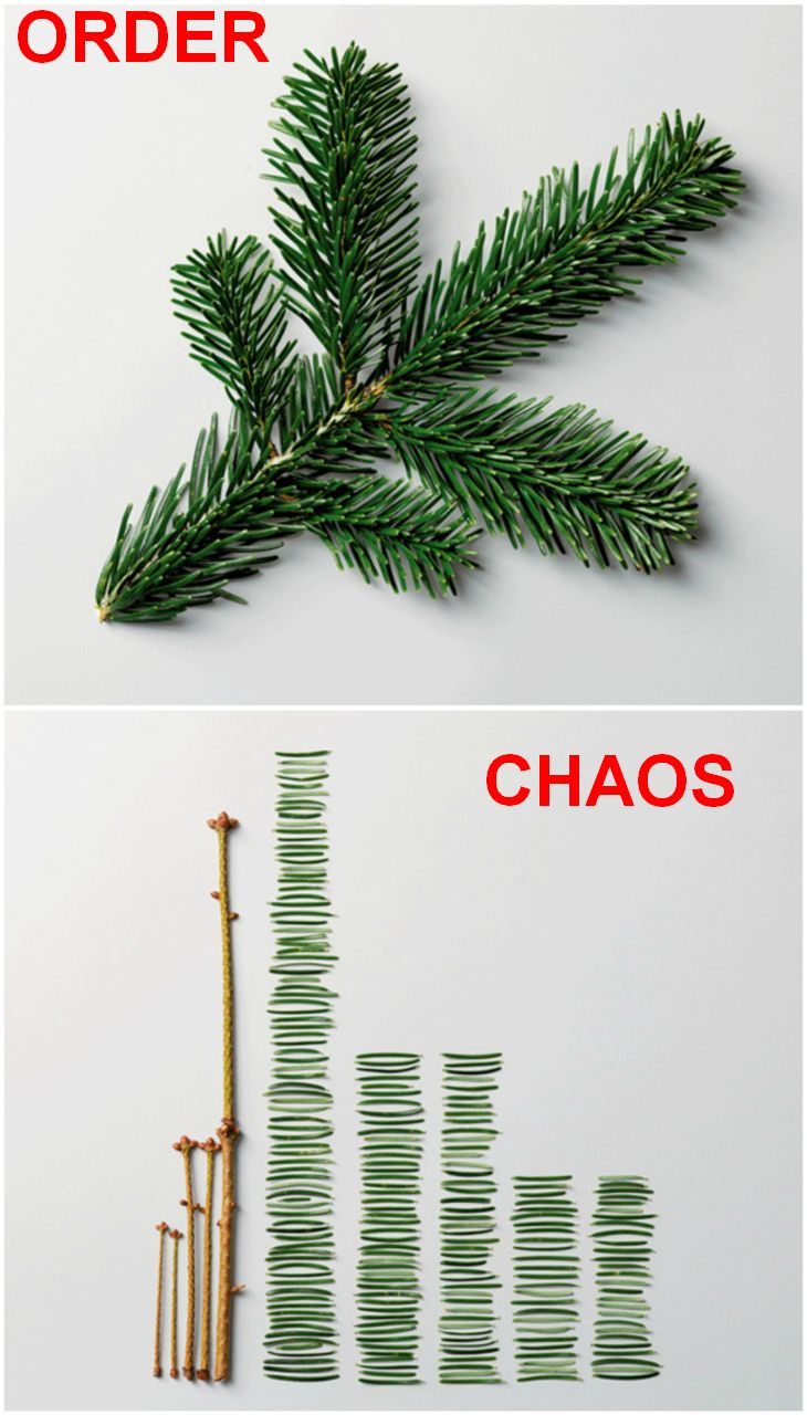 order_and_chaos